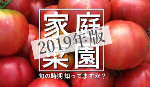 【2019年版】無農薬畑で家庭菜園!旬なお野菜を旬な時期にそのまま食べる幸せ